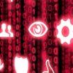 Elite hacker enters information security corridor