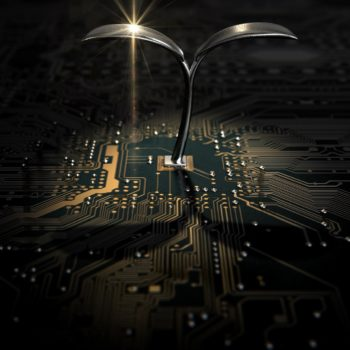 Macro Circuit Board With Futuristic Plant