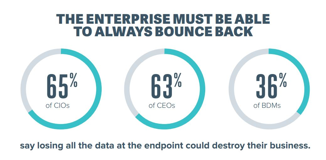 75% CEOs Admit to Using Unapproved Programs & Applications, Putting Critical Data At Risk TechNative