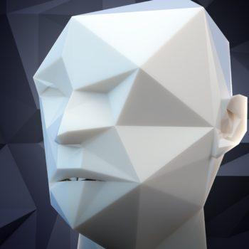 3D stylized head