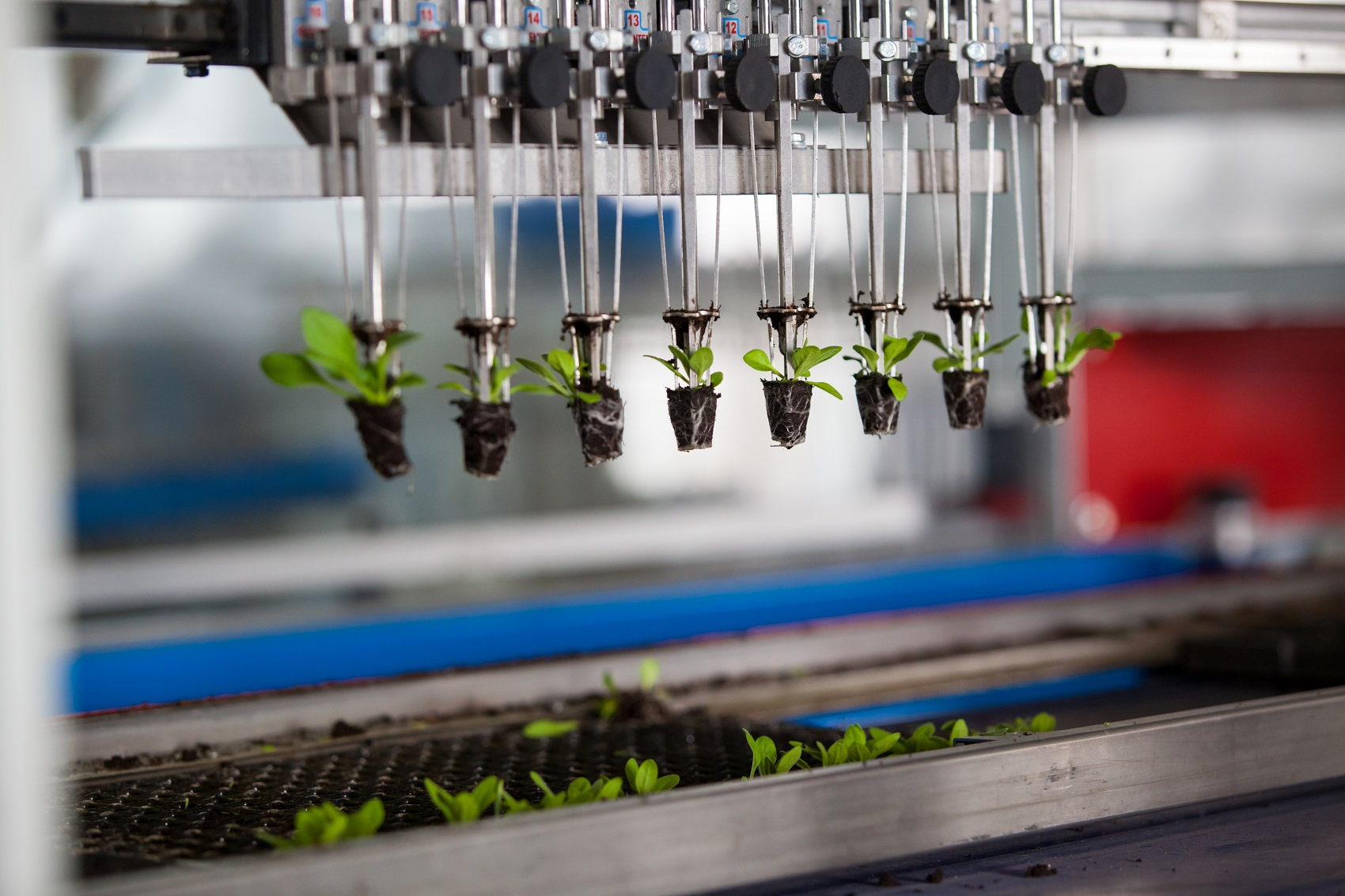 Research Shows IoT is Fueling A Green Revolution in the Farming Industry TechNative