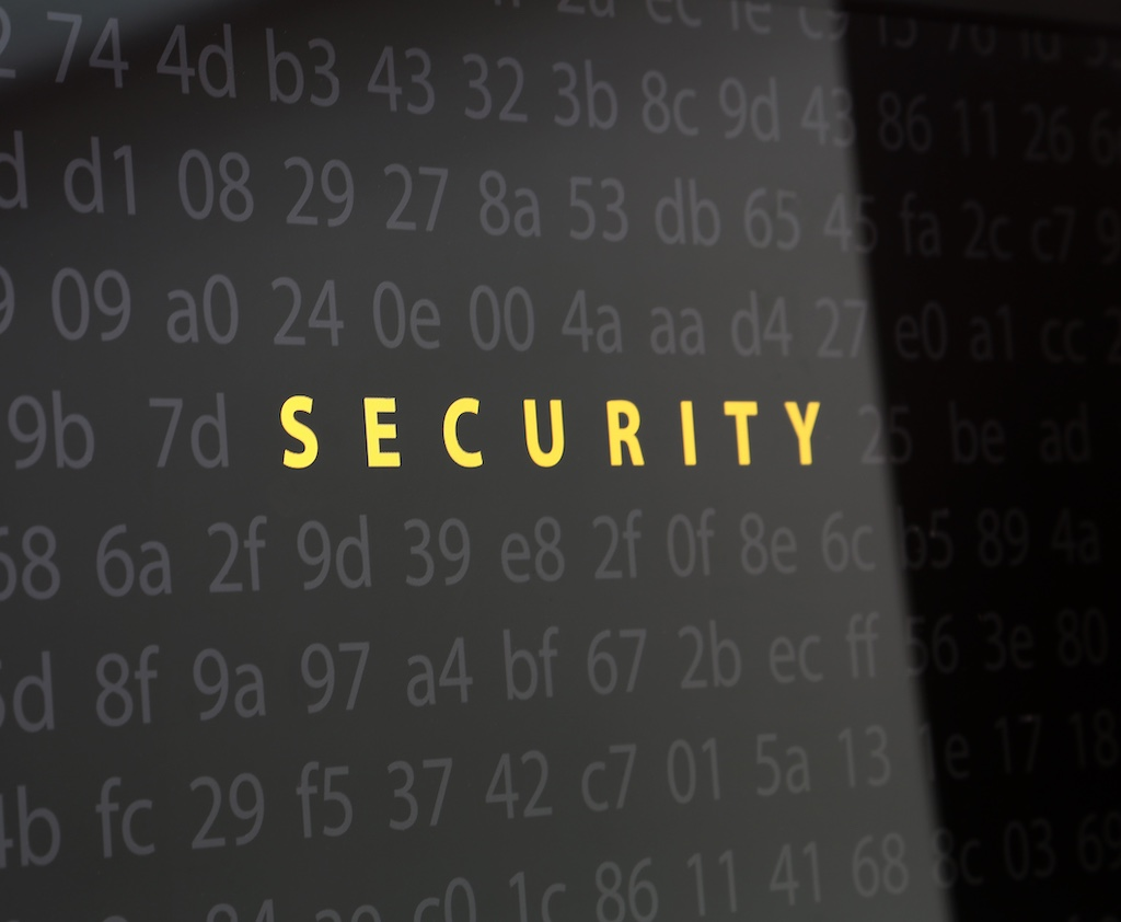Security Monitor Screen